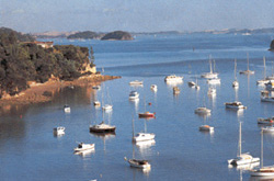 Opua - Bay of Islands